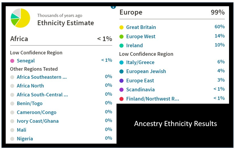 Ancestry DNA Test Kit Sale