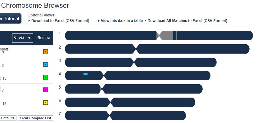 FamilyTreeDNA test chromosome browser
